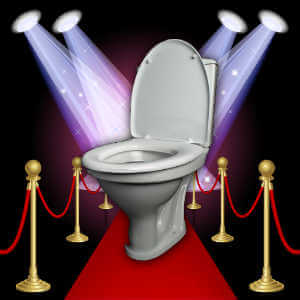 red-carpet-toilet